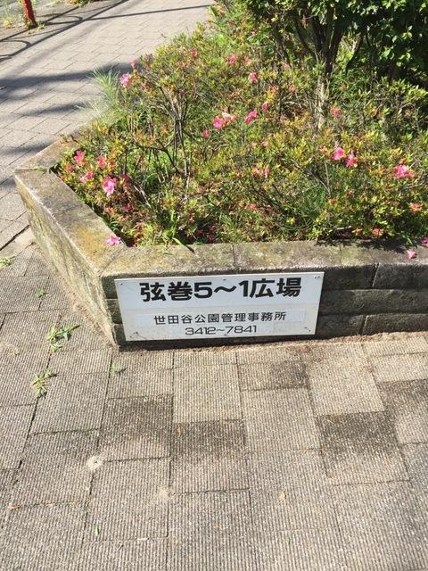 image-b701c.jpeg